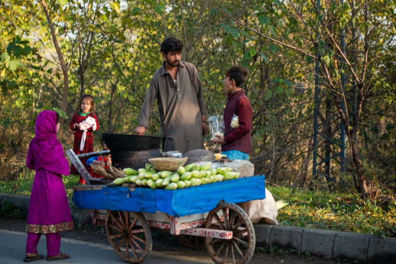 Street vendor under informal sector selling fresh corn